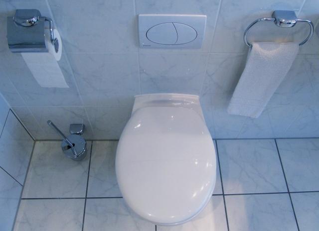 WC harmonisch ins Bad integrieren| Bad11 Ratgeber
